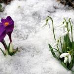 pavasaris_01